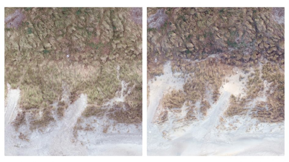 Photos of dunes at St Kilda